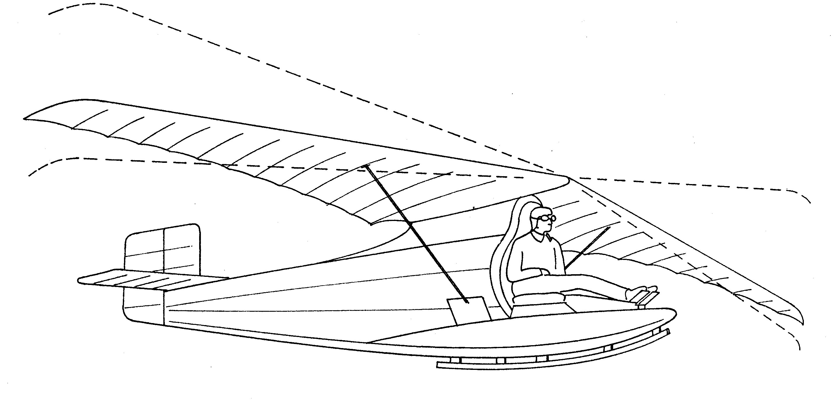 Ornithopter research papers